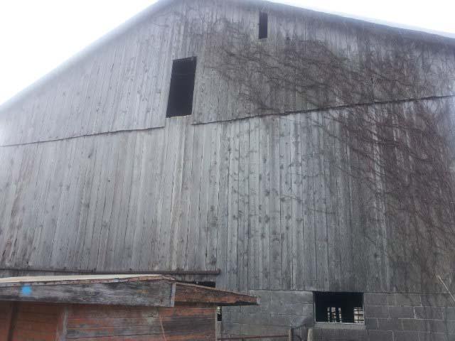 Reclaimed Barn Siding Amp Snow Fence From Reclaimed Wood