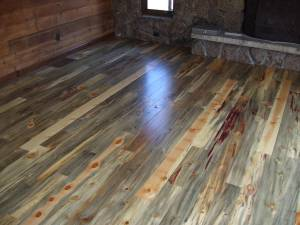 Beetle Kill Blue Pine1 Wide Plank